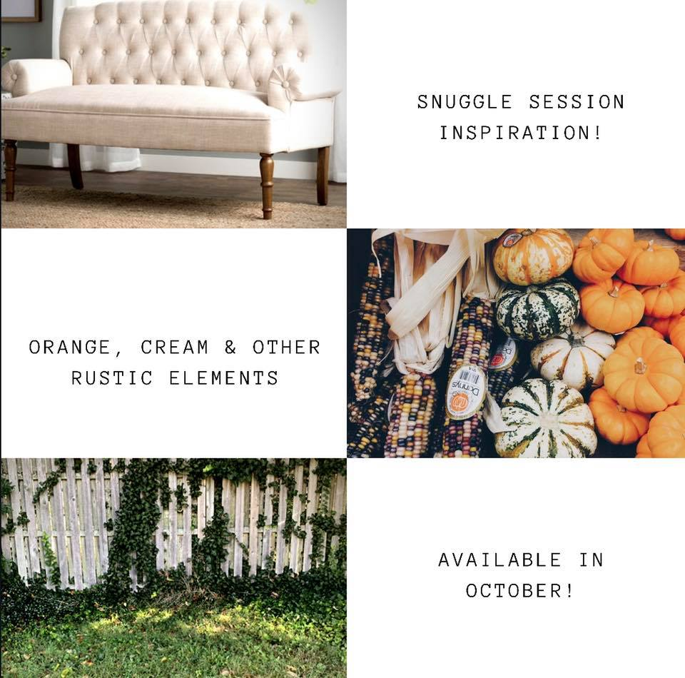 Fall and Holiday Mini Session Guide - 2019 71401965 2401656019948208 8358630867735674880 n